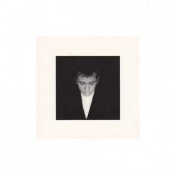 Peter Gabriel - Shaking the...