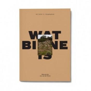 Wat Binne Is - Fotogedigteboek