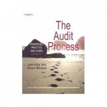 The Audit Process:...