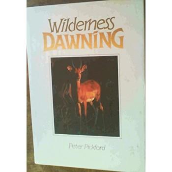 Wilderness Dawning