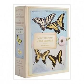 The Butterflies of Titian...